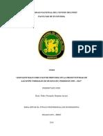 """Tesis """"Asociatividad Como Factor Principal en La Productividad de Las Mype Formales de Huancayo,"""