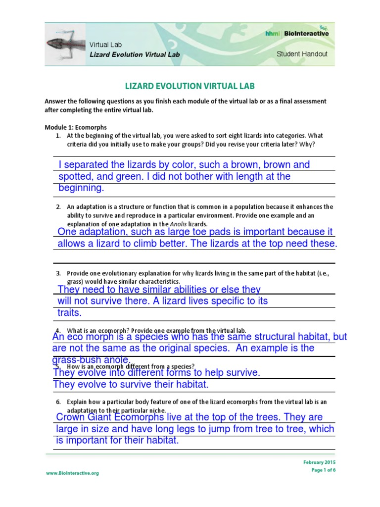 module 01 lab worksheet Safe lab procedures module 1: computer hardware introduction to the personal computer 5 01_1587131994_ch01qxd 12/19/07 8:24 am page 5.