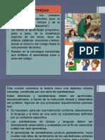 3.-MODELO-DE-DESTREZAS-Y-HOLISTICO.pptx