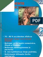 OFIDIOS   -   VEGETALES  2014