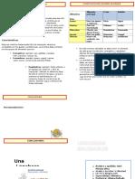 Abel 5 A-Diptico-Alimentos saludables-.docx