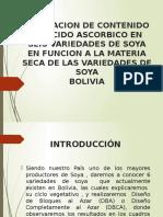 Presentacion de La Soya
