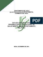 HUILA_SM.pdf