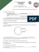Examen Global  ESPAÑOL 3°