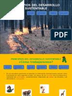 PRINCIPIOS_DEL_DESARROLLO_SUSTENTABLE.pps