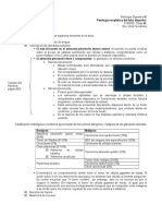 3.2 - Patología Neoplásica Del Tubo Digestivo