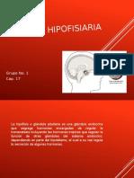 Expo Funcion Hipofisiaria