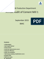 Annual Audit of CM 1