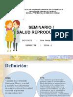 9.2 Salud Reproductiva Seminario