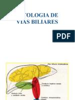 Expo Patologias Biliares