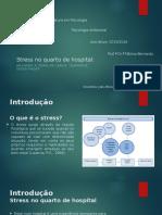 StressG3 João Afonso ; Afonso Pereira