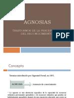 Agnosias Visuales