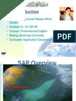 Professional English Presentation Waqas 15129145