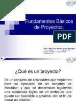 Fundamentosbasicosdeproyectos 150119221345 Conversion Gate02