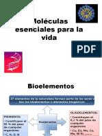Moléculas Esenciales Para La Vida Clase III