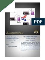 Determinaciondeph Bioquimica 141222083731
