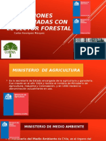 Instituciones Relacionadas Con El Sector Forestal