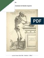 Anatomia Membro Superior - Resumo