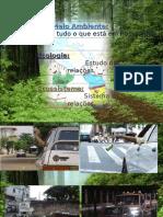 10.Cidadania e Meio Ambiente