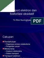 Transport Elektron Dan Fosforilasi Oksidatif