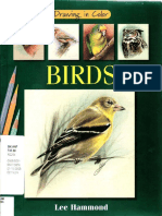 Drawing Birds In Color