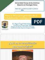 2013_7_principios_de_la_rehabilitacion_npsic.pdf