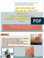 HEMORROIDES, ABSCESO ANORECTAL,FISTULA ANAL.ppt