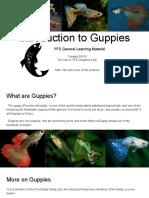 yfs guppy introduction