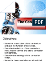 The Cerebellum-8.pdf
