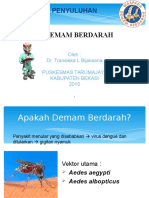 dhf TRANS.ppt