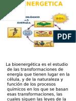 BIOENERGETICA 2012-I  WCC.ppt