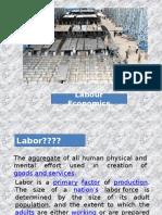 Introduction to Labour Economics & Personnel Economics_t