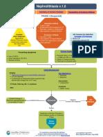 Nephrolithiasis Pathway