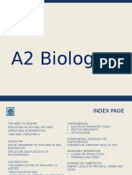 Biology 4.4.1 - Respiration