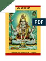 Sri_Rudram_Commentary.doc
