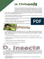Anthropoda Kelas Chilopoda