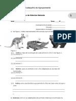 CTIC5_Teste 4.doc
