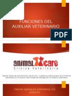 Funciones Del Auxiliar Veterinario