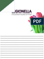 15.-Legionella Klesiella Pseudomonas H Pilory