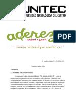 Gerencia de Mercadeo II Andres1