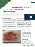 Principales Lesiones Asociadas Al Tracto Reproductor en Conejas
