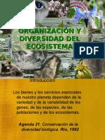 Biodiversidad y Ecosistemas 2015 II