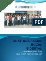 Anatomia Bucal e Dental