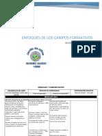 Enfoques de Los Campos Formativos