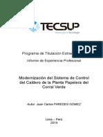 05 Modelo de Informe de Experiencia Profesional TEC