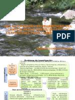 Pg 331_presentación de Las Tesis