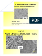 A Paradigm in Nanocellulose Materials