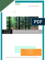 Planificação do Projecto de aproveitamento de energia biomassa
