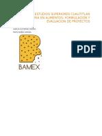 Plan de Negocios Bamex