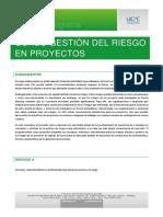 752013Gestión de Riesgos en Proyectos